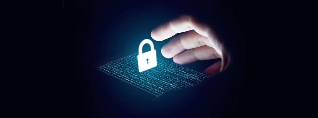 Information Security Activities